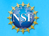 Lauren Finkenauer receives NSF GRFP award